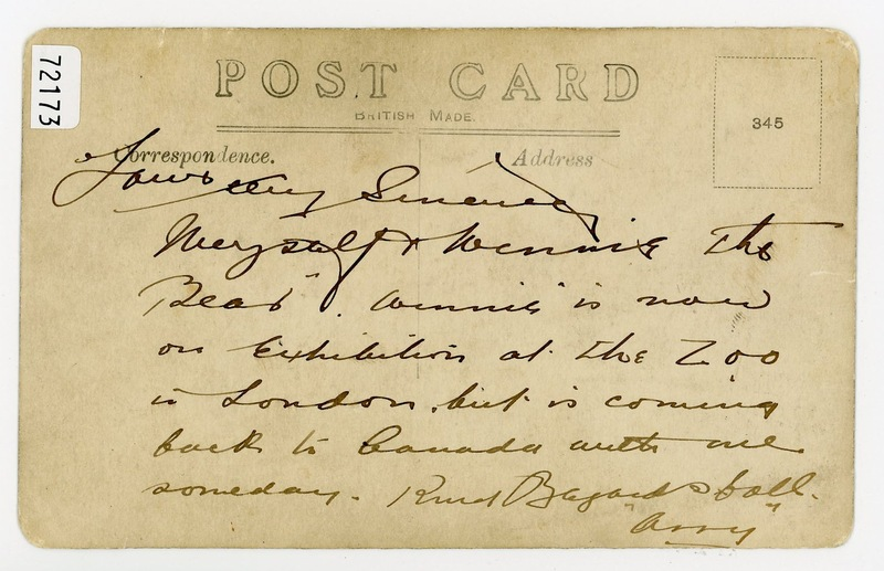 Verso of postcard of Harry Colebourn feeding Winnie