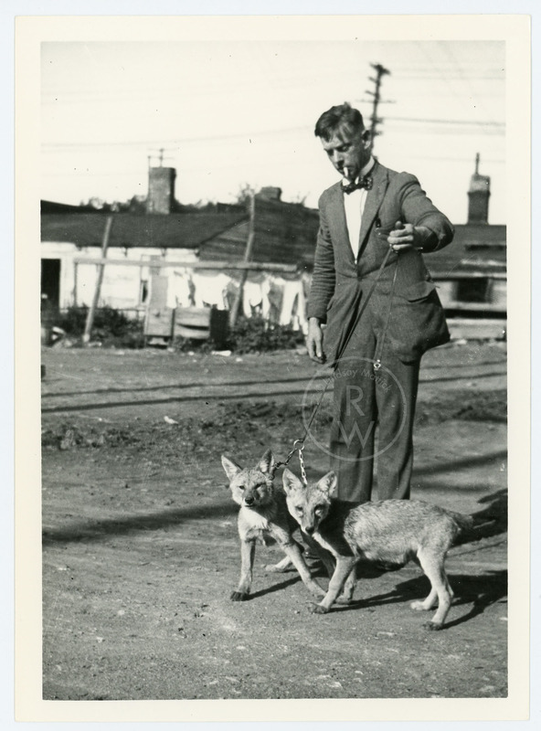 Harry Colebourn with wolf cubs