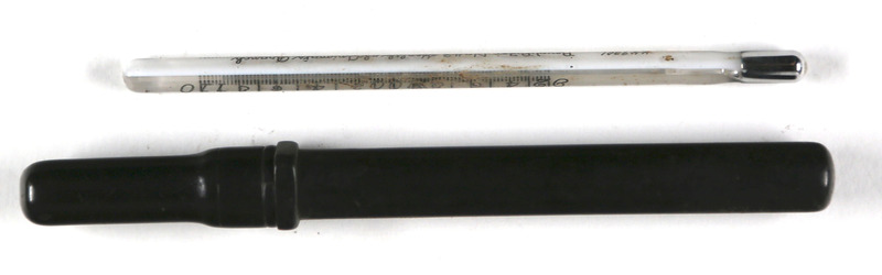 Thermometer and case